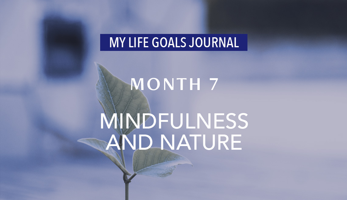 audio_my-life-goals-journal_month-7